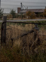2014_1113_red wood rd